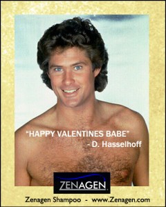 Happy-Valentines-Day-Card-Hasselhoff-Vday-Ecard-Zenagen-Hair-Loss-Shampoo-Blog